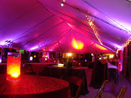 LED lamps in tent